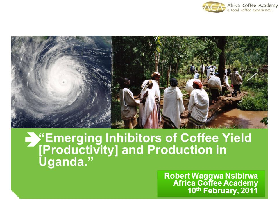 Emerging Inhibitors of Coffee Yield [Productivity] and Production in Uganda.