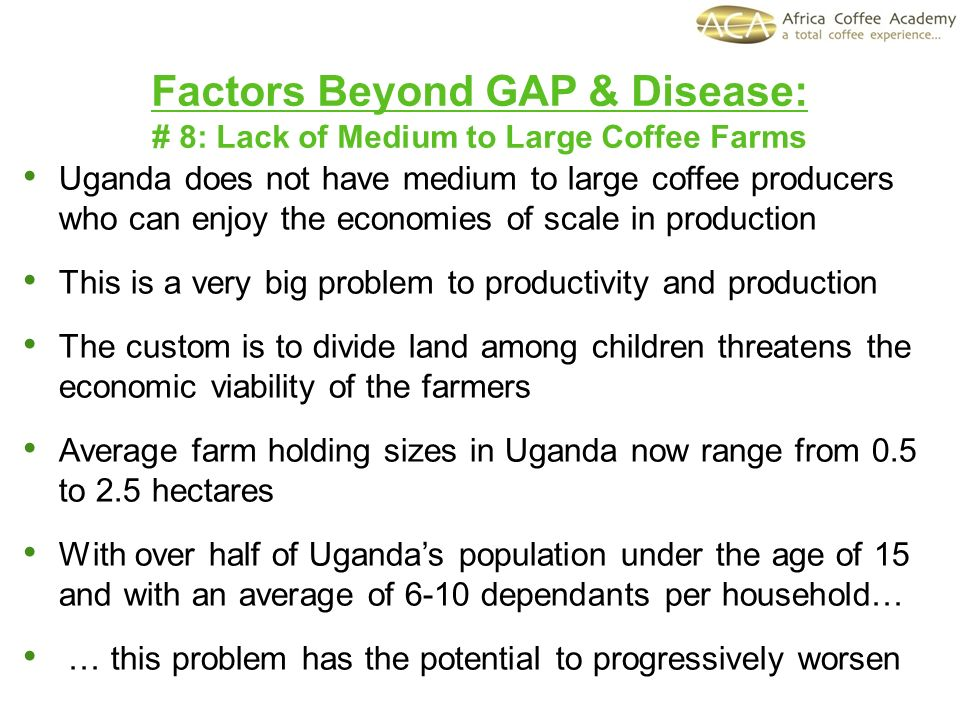 Factors Beyond GAP & Disease: # 8: Lack of Medium to Large Coffee Farms Uganda does not have medium to large coffee producers who can enjoy the economies of scale in production This is a very big problem to productivity and production The custom is to divide land among children threatens the economic viability of the farmers Average farm holding sizes in Uganda now range from 0.5 to 2.5 hectares With over half of Ugandas population under the age of 15 and with an average of 6-10 dependants per household… … this problem has the potential to progressively worsen