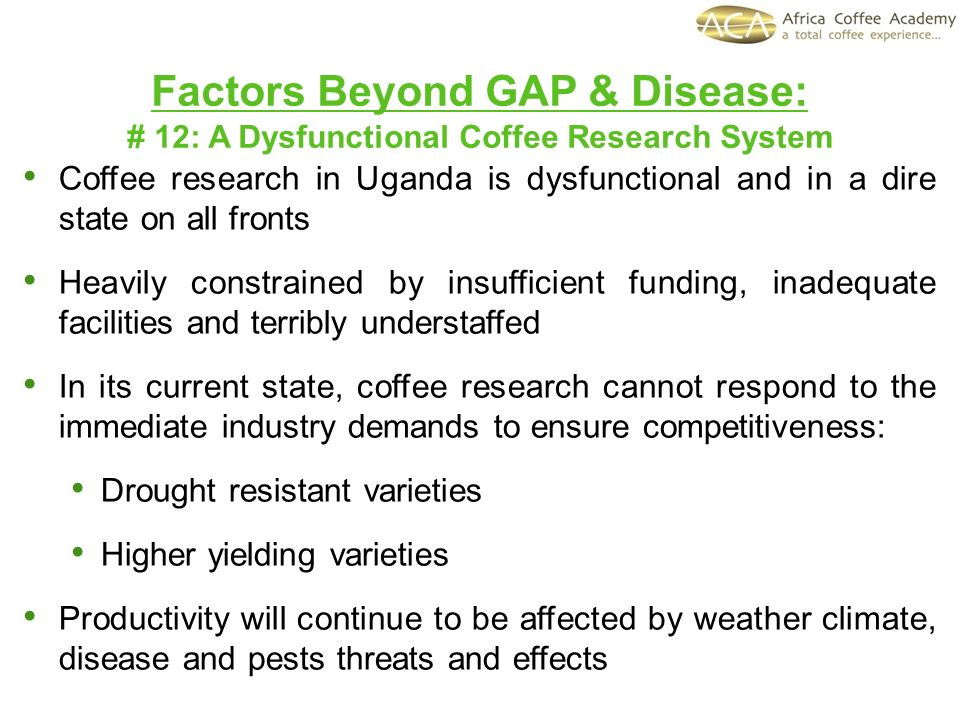 Factors Beyond GAP & Disease: # 12: A Dysfunctional Coffee Research System Coffee research in Uganda is dysfunctional and in a dire state on all fronts Heavily constrained by insufficient funding, inadequate facilities and terribly understaffed In its current state, coffee research cannot respond to the immediate industry demands to ensure competitiveness: Drought resistant varieties Higher yielding varieties Productivity will continue to be affected by weather climate, disease and pests threats and effects