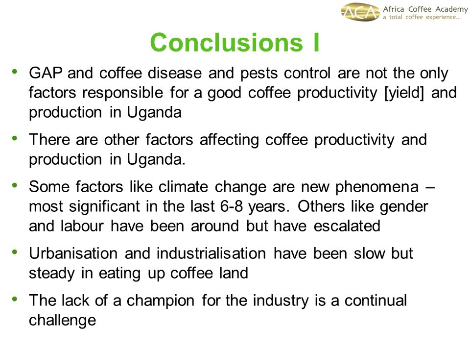 Conclusions I GAP and coffee disease and pests control are not the only factors responsible for a good coffee productivity [yield] and production in Uganda There are other factors affecting coffee productivity and production in Uganda.