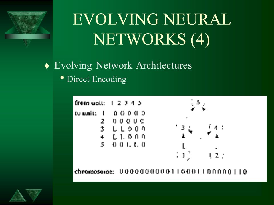 EVOLVING NEURAL NETWORKS (4) t Evolving Network Architectures Direct Encoding