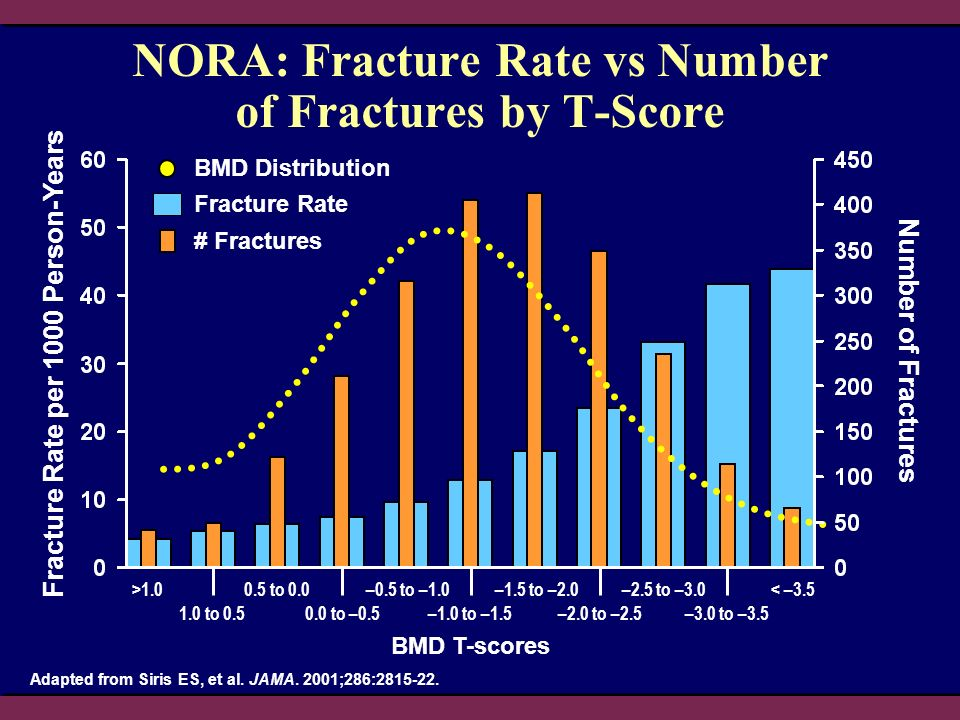 # Fractures NORA: Fracture Rate vs Number of Fractures by T-Score BMD T-scores Fracture Rate per 1000 Person-Years Number of Fractures >1.0 1.0 to 0.5 0.5 to 0.0 0.0 to –0.5 –0.5 to –1.0 –1.0 to –1.5 –1.5 to –2.0 –2.0 to –2.5 –2.5 to –3.0 –3.0 to –3.5 < –3.5 Adapted from Siris ES, et al.