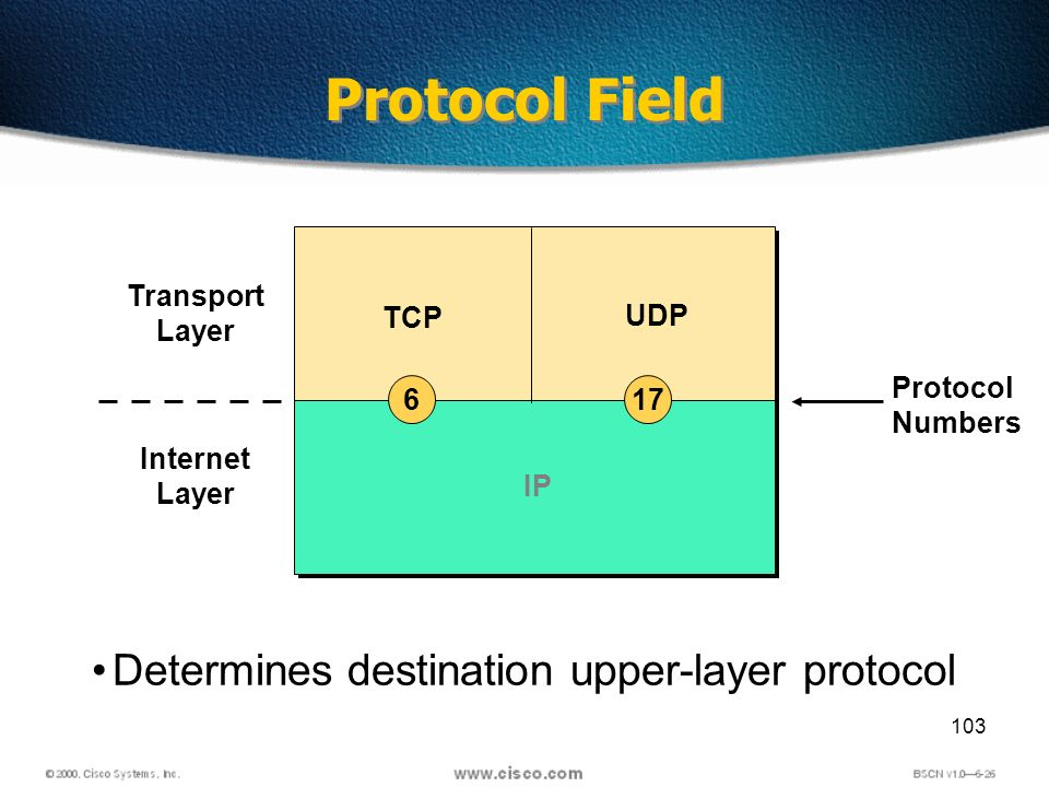 103 Determines destination upper-layer protocol Protocol Field Transport Layer Internet Layer TCP UDP Protocol Numbers IP 176