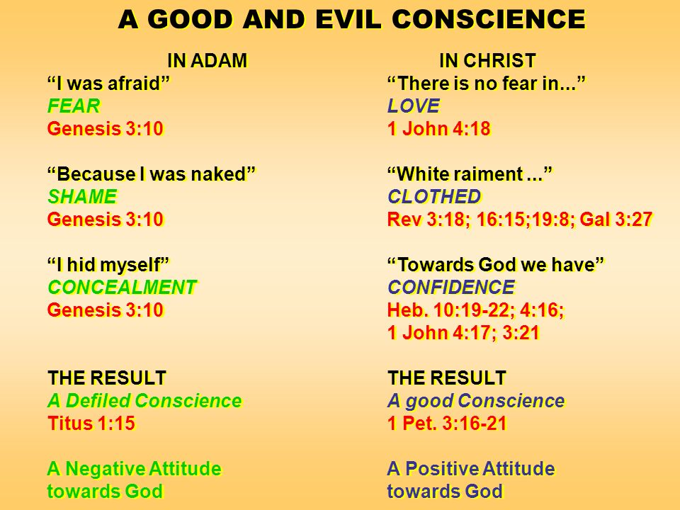A GOOD AND EVIL CONSCIENCE IN ADAMIN CHRIST I was afraidThere is no fear in...