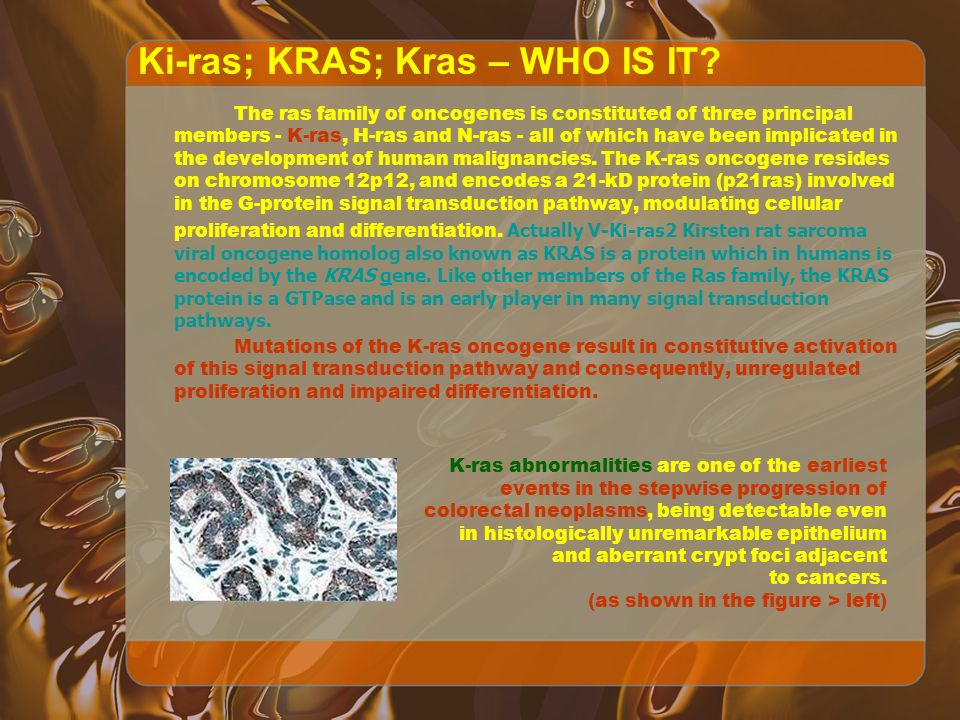 Ki-ras; KRAS; Kras – WHO IS IT.