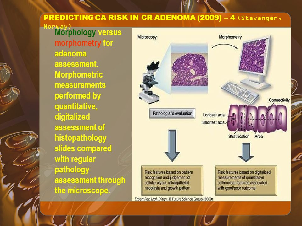 PREDICTING CA RISK IN CR ADENOMA (2009) – 4 (Stavanger, Norway) Morphology versus morphometry for adenoma assessment.