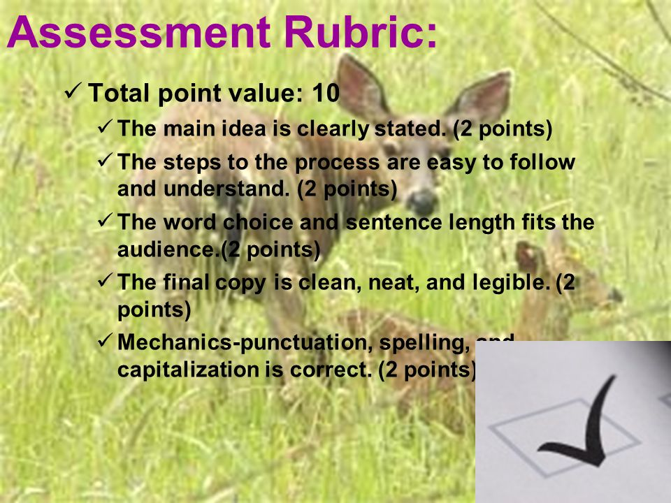 Assessment Rubric: Total point value: 10 The main idea is clearly stated.