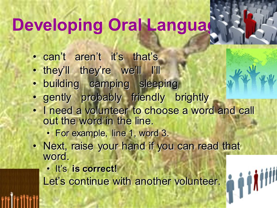 Developing Oral Language cant arent its thatscant arent its thats theyll theyre well Illtheyll theyre well Ill building camping sleepingbuilding camping sleeping gently probably friendly brightlygently probably friendly brightly I need a volunteer to choose a word and call out the word in the line.I need a volunteer to choose a word and call out the word in the line.