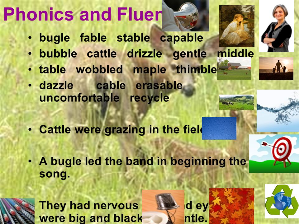 Phonics and Fluency bugle fable stable capable bubble cattle drizzle gentle middle table wobbled maple thimble dazzle cable erasable uncomfortable recycle Cattle were grazing in the field.