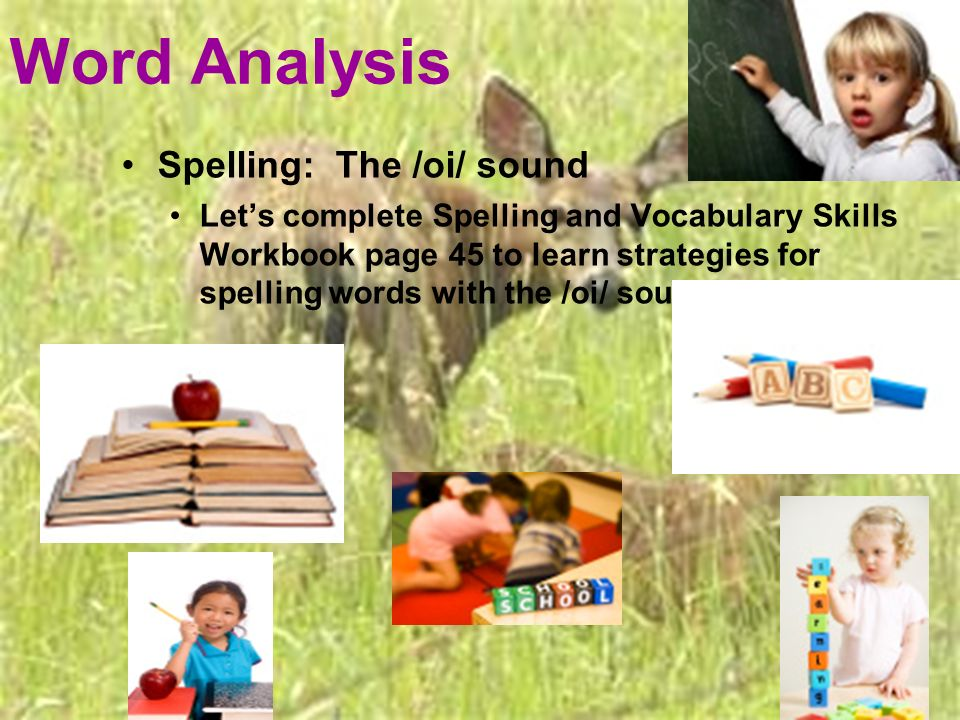 Word Analysis Spelling: The /oi/ sound Lets complete Spelling and Vocabulary Skills Workbook page 45 to learn strategies for spelling words with the /oi/ sound.