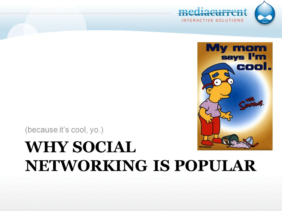 WHY SOCIAL NETWORKING IS POPULAR (because its cool, yo.)