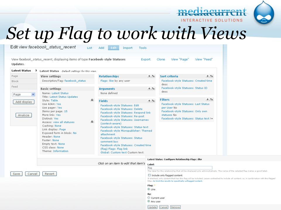Set up Flag to work with Views