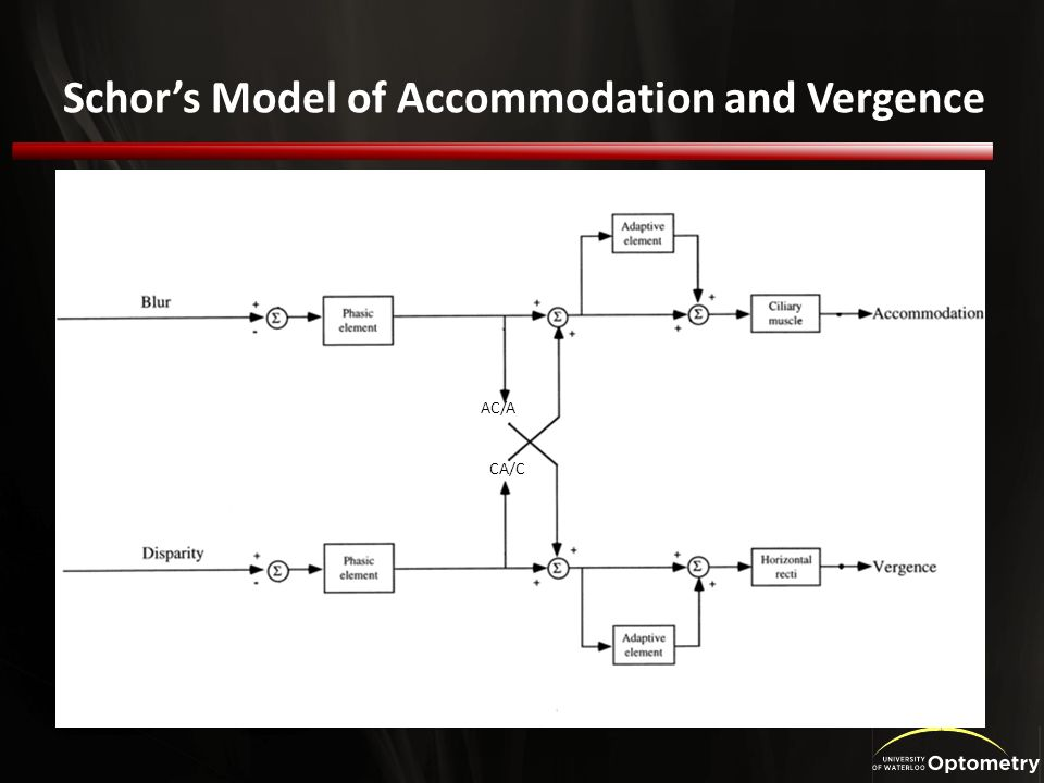 Schors Model of Accommodation and Vergence AC/A CA/C