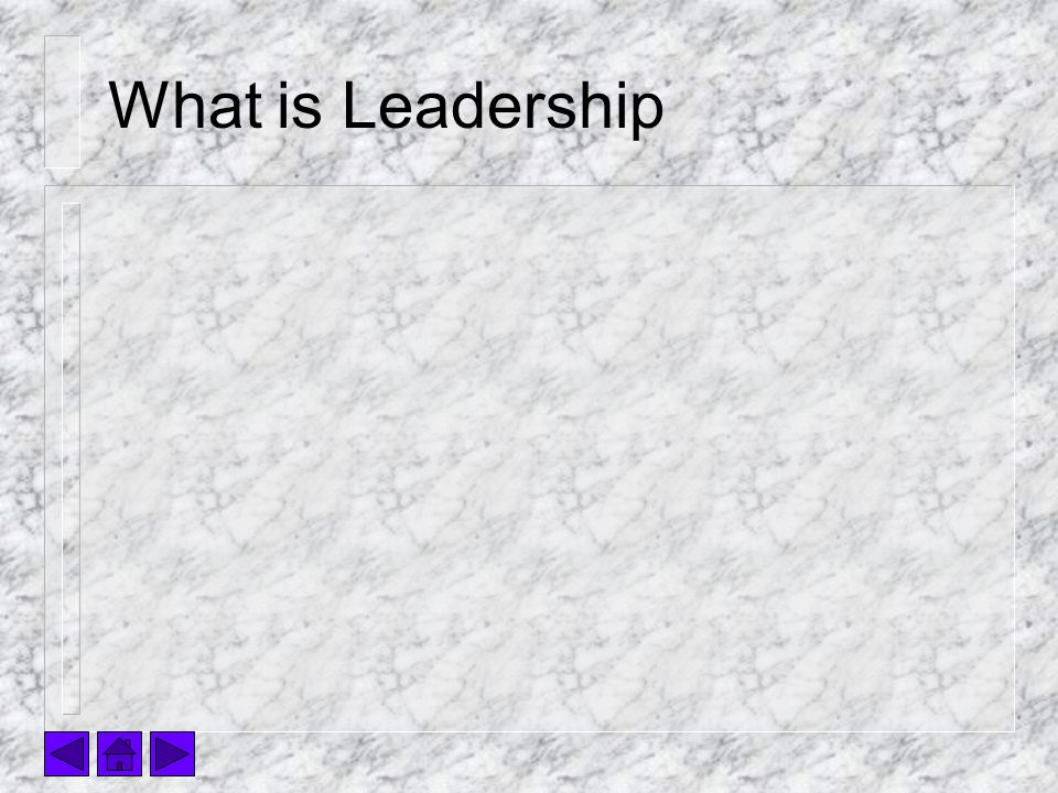What is Leadership