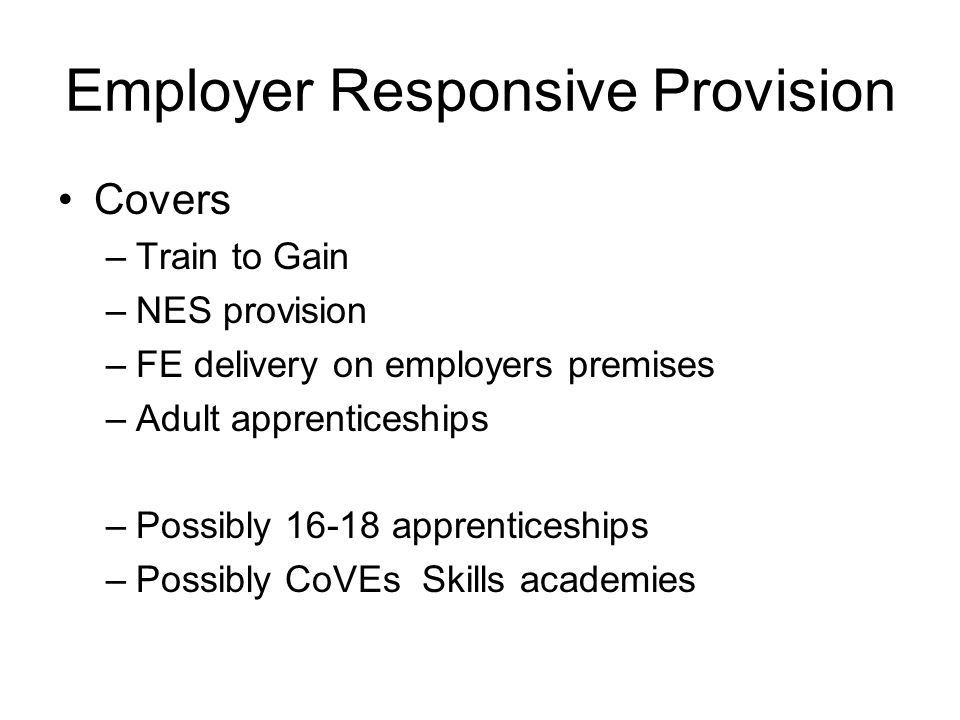 Employer Responsive Provision Covers –Train to Gain –NES provision –FE delivery on employers premises –Adult apprenticeships –Possibly apprenticeships –Possibly CoVEs Skills academies