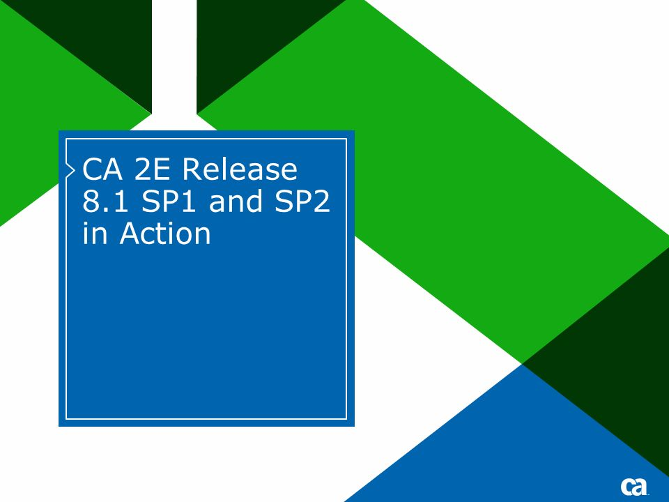 CA 2E Release 8.1 SP1 and SP2 in Action Title text for Title or Divider pages should be either 40 pt for short titles /28 pt for subtitles or 32 pts for longer titles /24 pt for subtitles No DATE on divider pages.