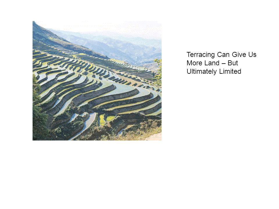 Terracing Can Give Us More Land – But Ultimately Limited