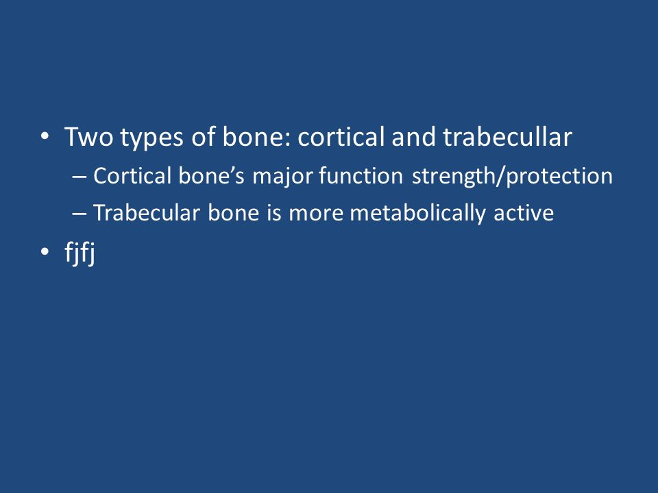 Two types of bone: cortical and trabecullar – Cortical bones major function strength/protection – Trabecular bone is more metabolically active fjfj