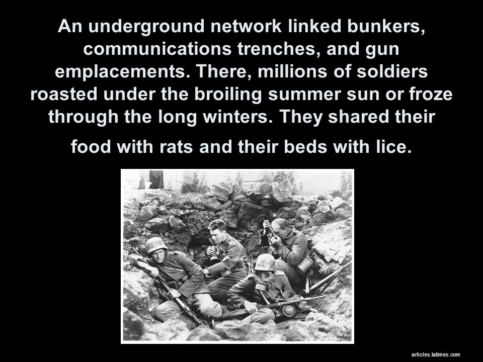 An underground network linked bunkers, communications trenches, and gun emplacements.