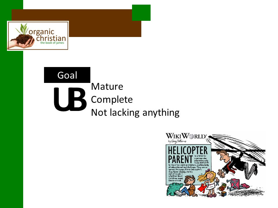 Goal Mature Complete Not lacking anything UB