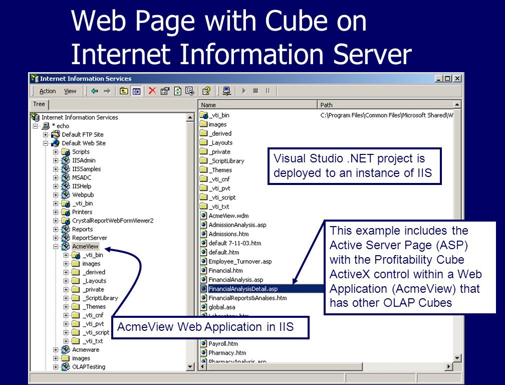 Web Page with Cube on Internet Information Server Visual Studio.NET project is deployed to an instance of IIS This example includes the Active Server Page (ASP) with the Profitability Cube ActiveX control within a Web Application (AcmeView) that has other OLAP Cubes AcmeView Web Application in IIS