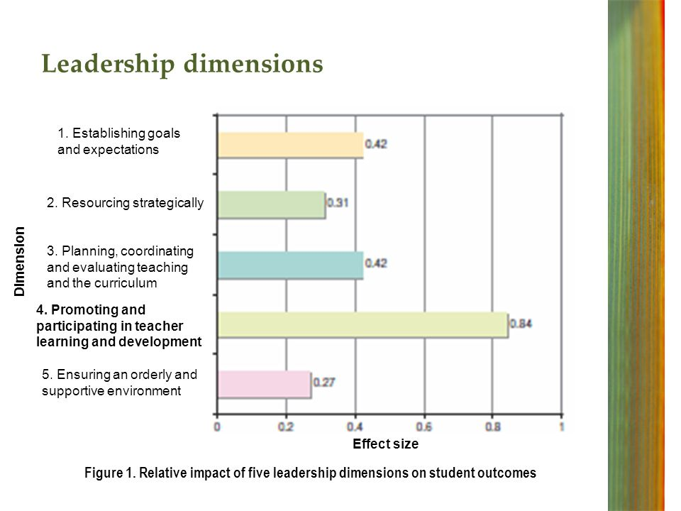 Leadership dimensions 1. Establishing goals and expectations 2.
