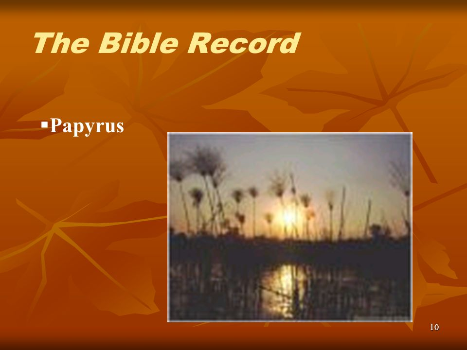 10 Papyrus The Bible Record