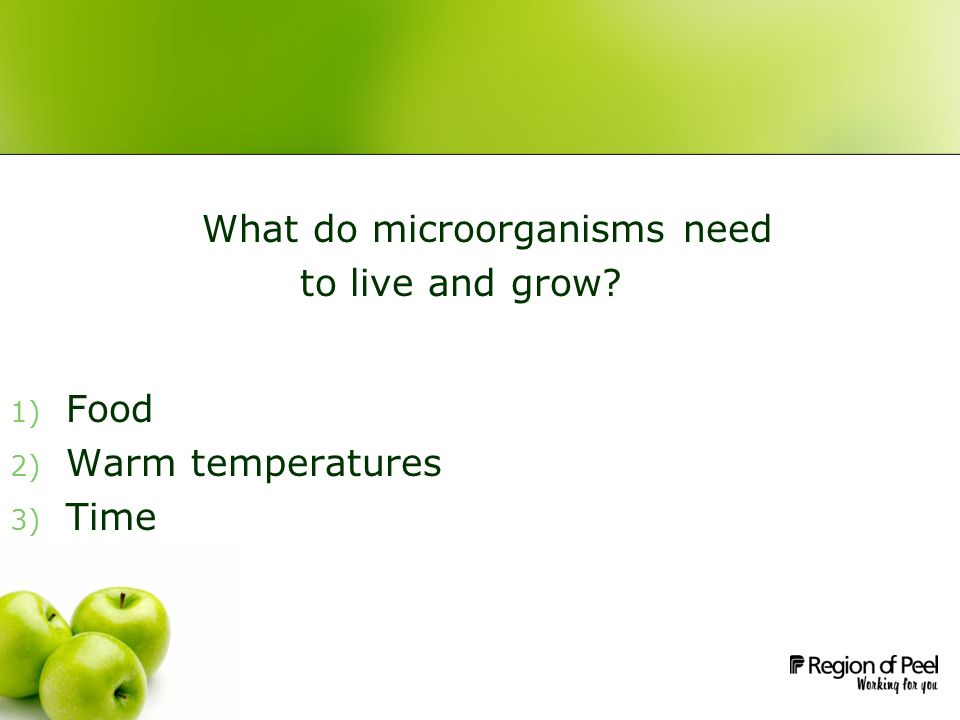 What do microorganisms need to live and grow 1) Food 2) Warm temperatures 3) Time