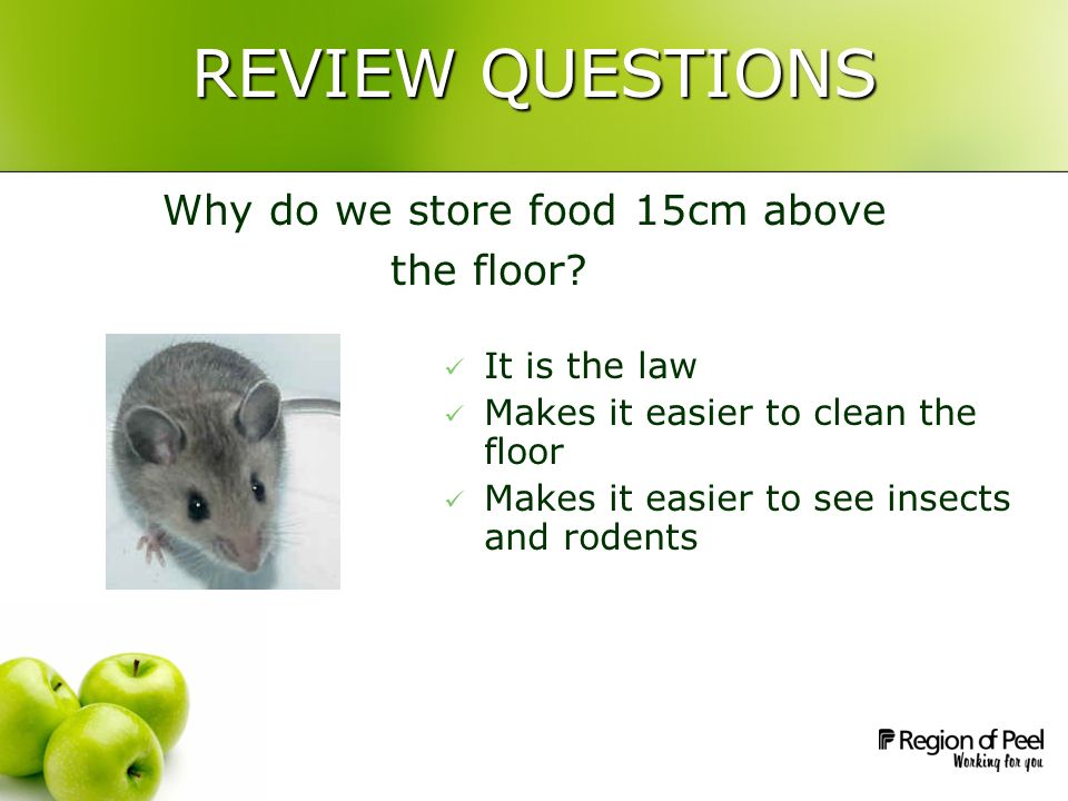 REVIEW QUESTIONS Why do we store food 15cm above the floor.