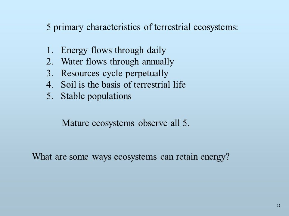 5 primary characteristics of terrestrial ecosystems: 1.Energy flows through daily 2.Water flows through annually 3.Resources cycle perpetually 4.Soil is the basis of terrestrial life 5.Stable populations What are some ways ecosystems can retain energy.