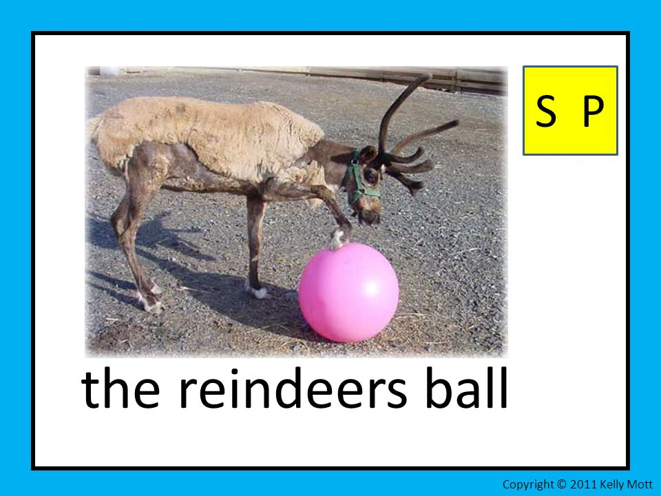the reindeers ball S P Copyright © 2011 Kelly Mott
