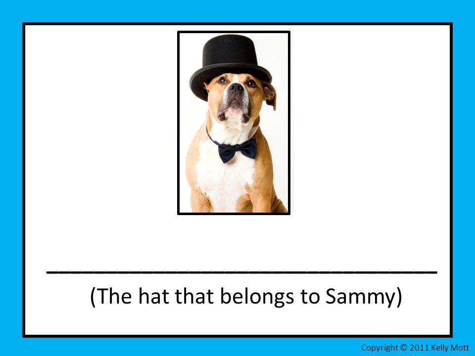 _________________________________ (The hat that belongs to Sammy) Copyright © 2011 Kelly Mott