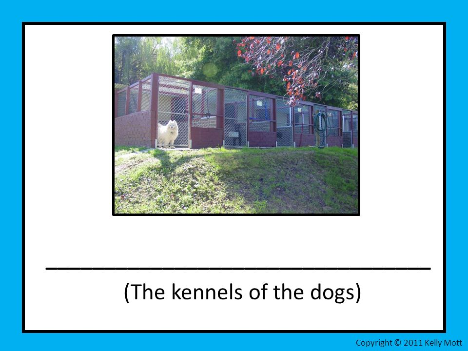 _________________________________ (The kennels of the dogs) Copyright © 2011 Kelly Mott