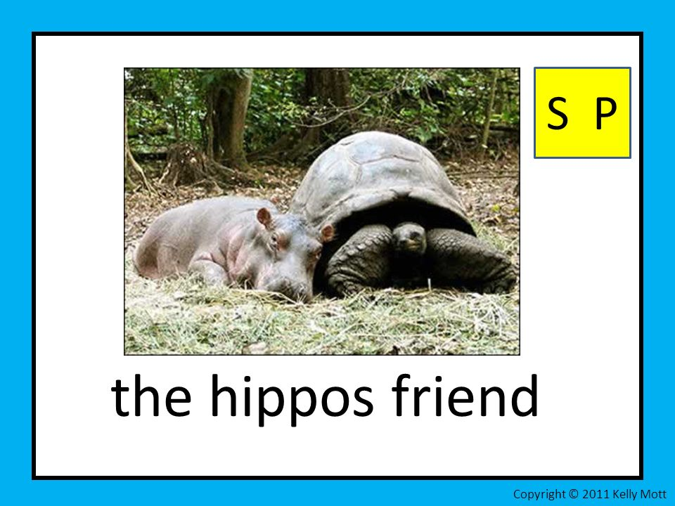 the hippos friend S P Copyright © 2011 Kelly Mott