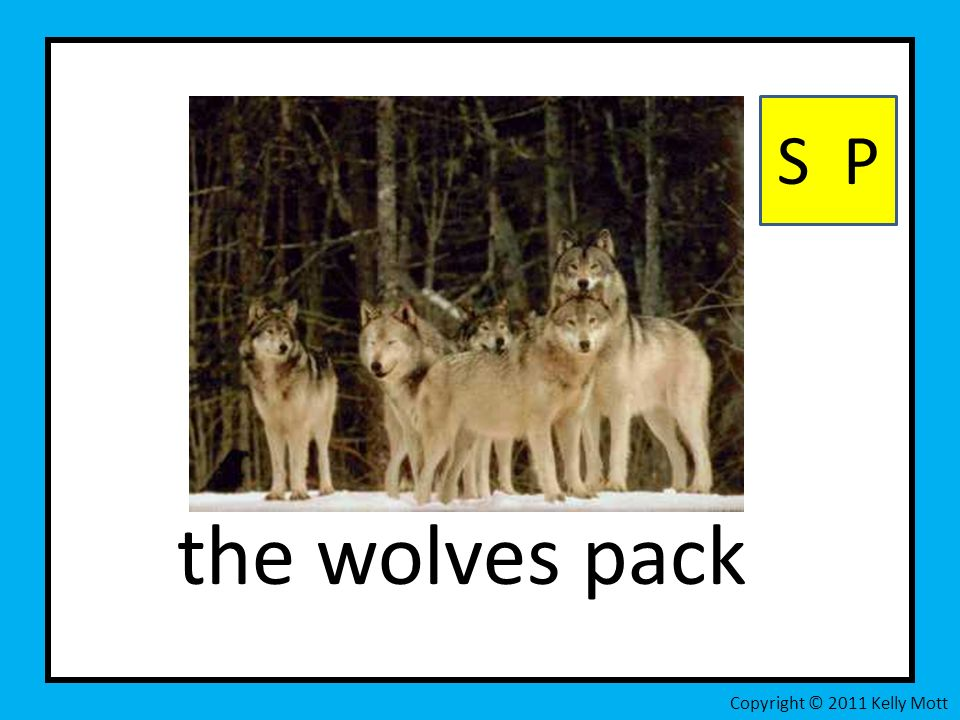 the wolves pack S P Copyright © 2011 Kelly Mott