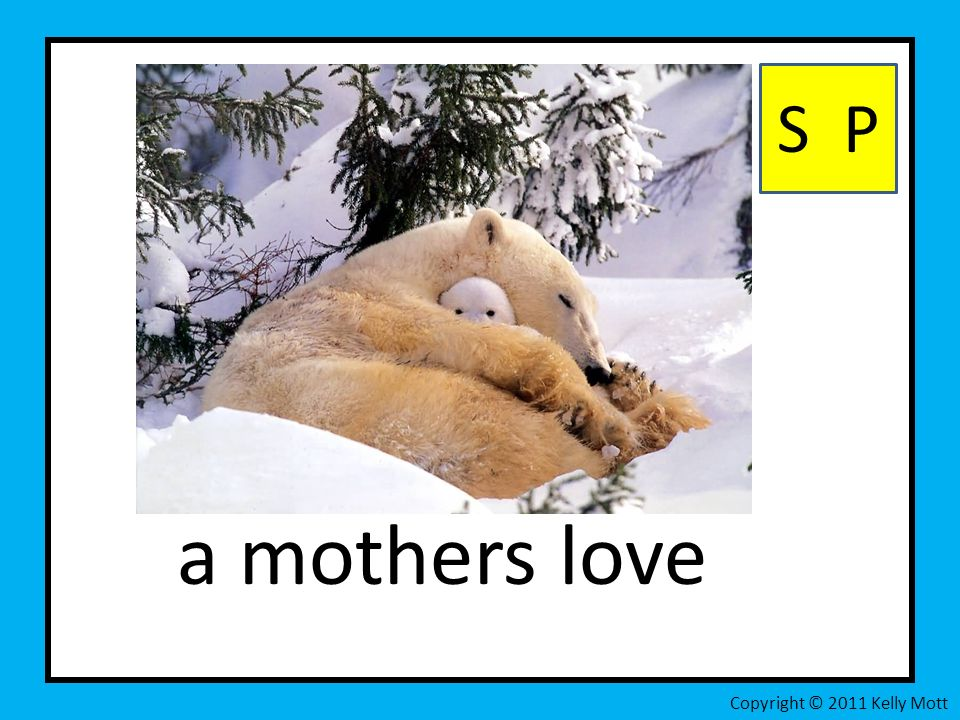 a mothers love S P Copyright © 2011 Kelly Mott