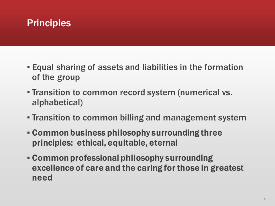 Principles Equal sharing of assets and liabilities in the formation of the group Transition to common record system (numerical vs.