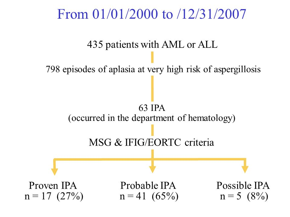 From 01/01/2000 to /12/31/2007 Proven IPA n = 17 (27%) Probable IPA n = 41 (65%) Possible IPA n = 5 (8%) 63 IPA (occurred in the department of hematology) MSG & IFIG/EORTC criteria 798 episodes of aplasia at very high risk of aspergillosis 435 patients with AML or ALL