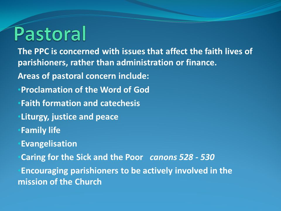 The PPC is concerned with issues that affect the faith lives of parishioners, rather than administration or finance.