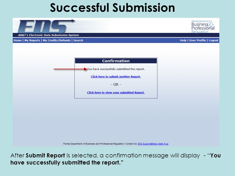 After Submit Report is selected, a confirmation message will display - You have successfully submitted the report.