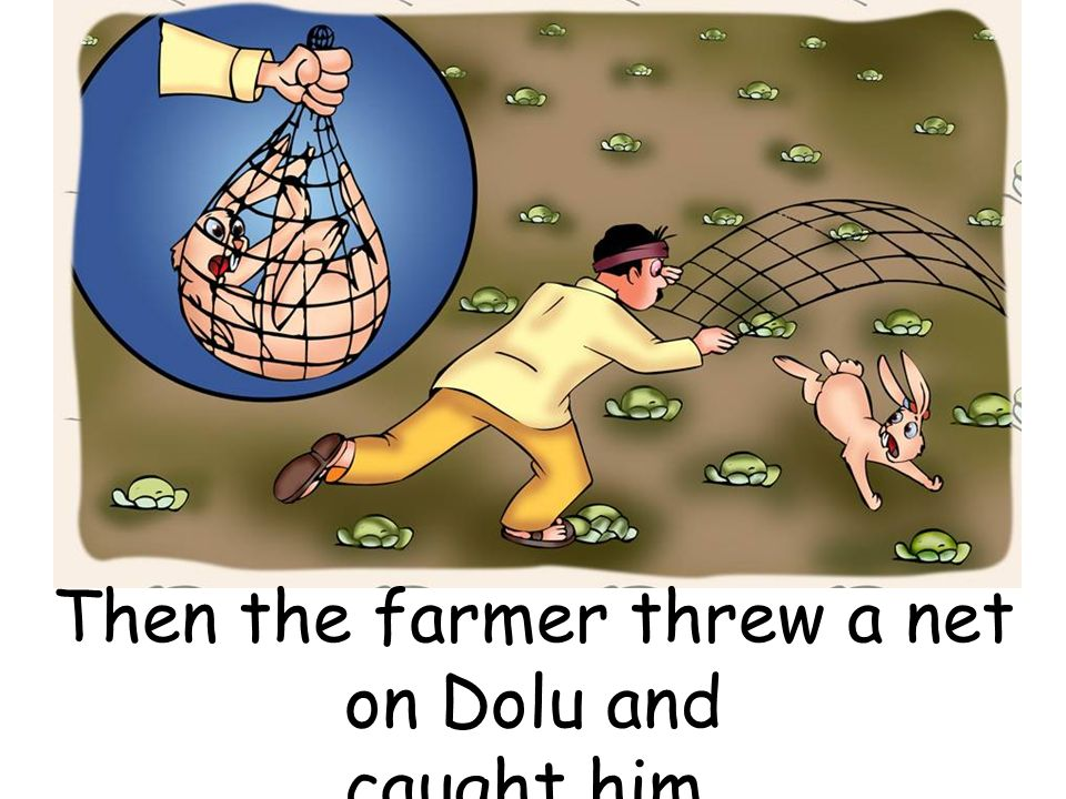 Then the farmer threw a net on Dolu and caught him.