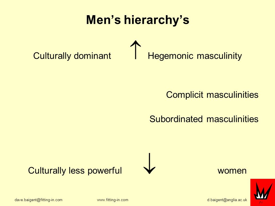 Mens hierarchys Culturally dominant Hegemonic masculinity Complicit masculinities Subordinated masculinities Culturally less powerful women