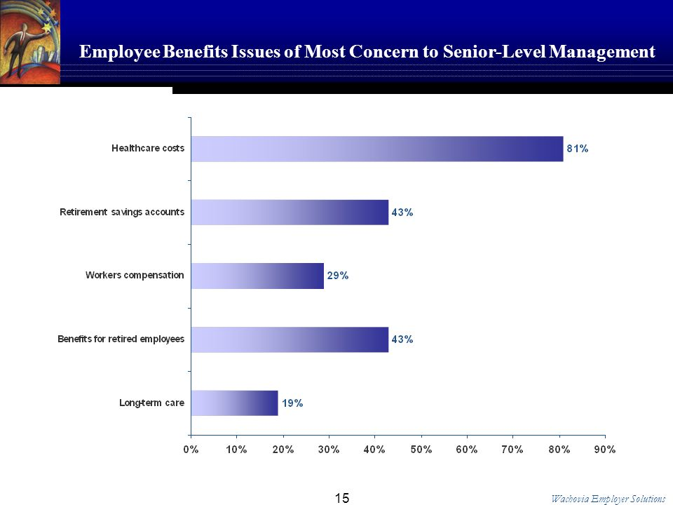 Wachovia Employer Solutions 15 Employee Benefits Issues of Most Concern to Senior-Level Management
