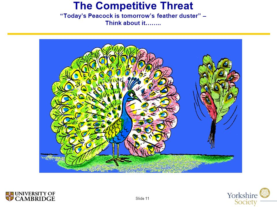 Slide 11 The Competitive Threat Todays Peacock is tomorrows feather duster – Think about it……..