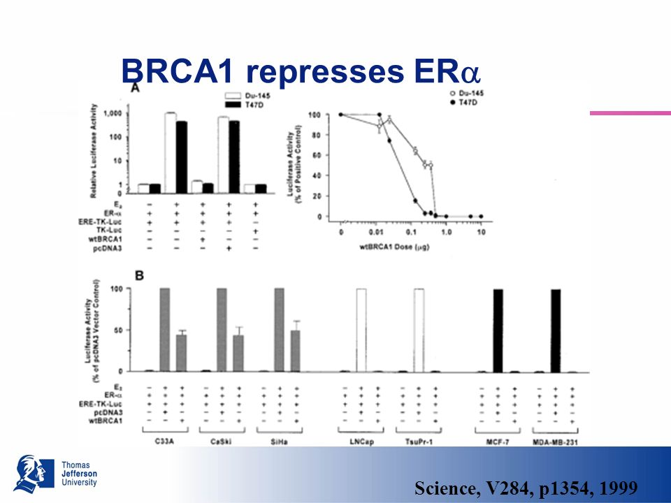 Science, V284, p1354, 1999 BRCA1 represses ER