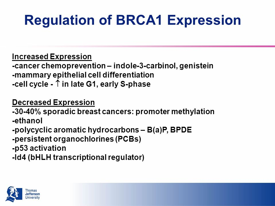 Regulation of BRCA1 Expression Increased Expression -cancer chemoprevention – indole-3-carbinol, genistein -mammary epithelial cell differentiation -cell cycle - in late G1, early S-phase Decreased Expression % sporadic breast cancers: promoter methylation -ethanol -polycyclic aromatic hydrocarbons – B(a)P, BPDE -persistent organochlorines (PCBs) -p53 activation -Id4 (bHLH transcriptional regulator)