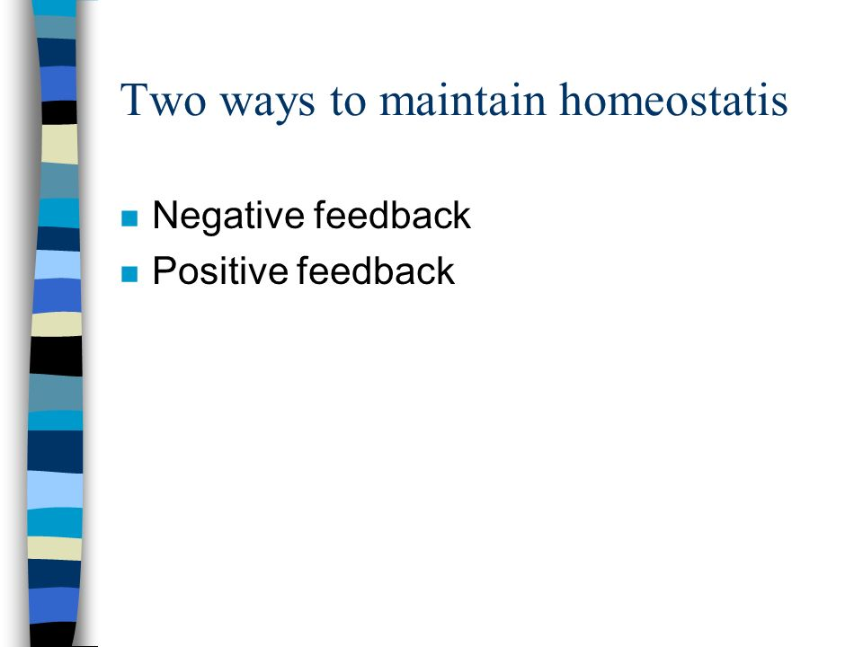 Two ways to maintain homeostatis n Negative feedback n Positive feedback