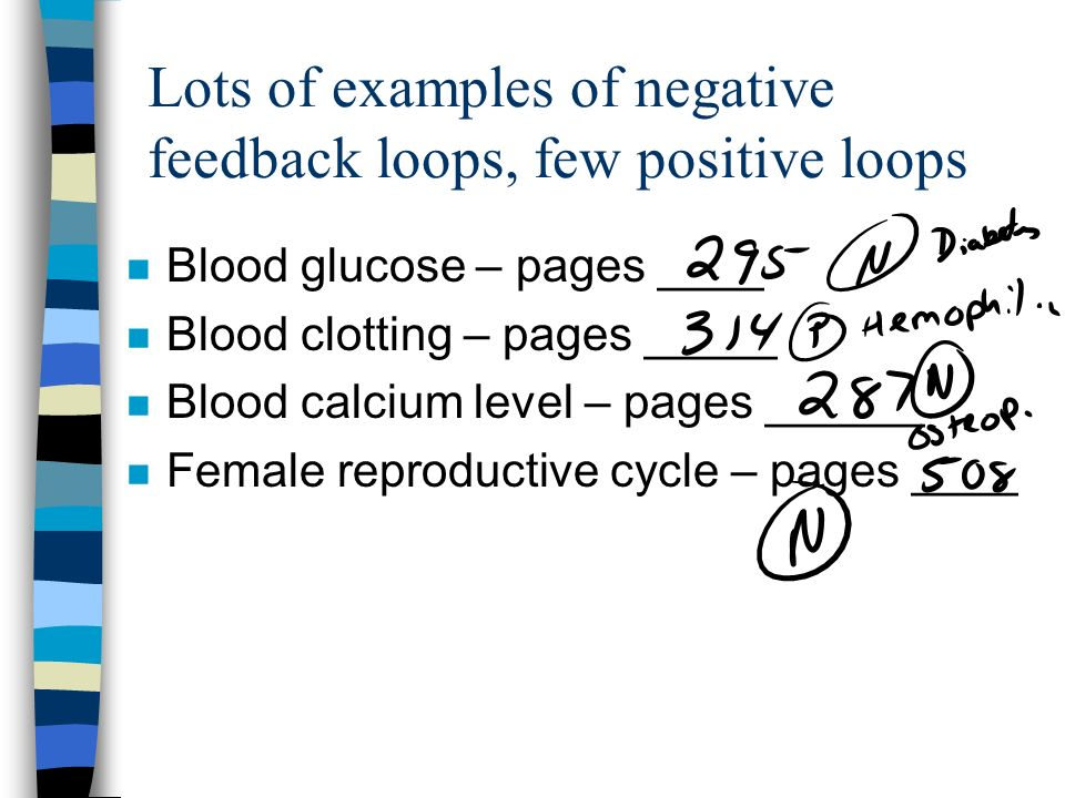 Lots of examples of negative feedback loops, few positive loops n Blood glucose – pages ____ n Blood clotting – pages _____ n Blood calcium level – pages ______ n Female reproductive cycle – pages ____