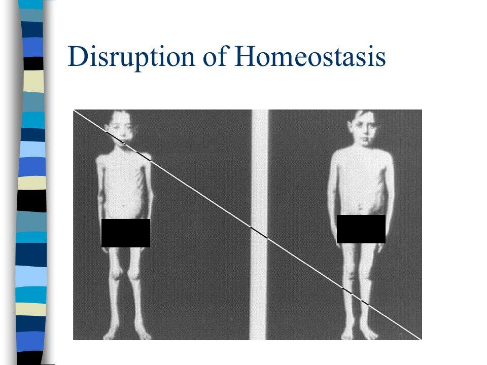 Disruption of Homeostasis