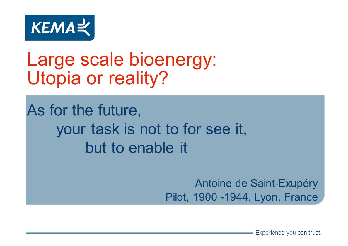 Experience you can trust. Large scale bioenergy: Utopia or reality.